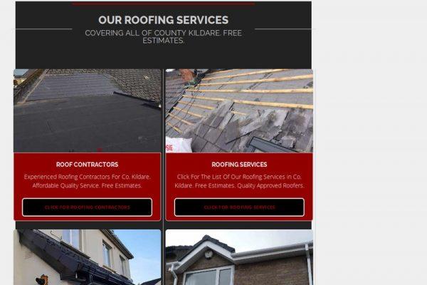 Roof Care Kildare